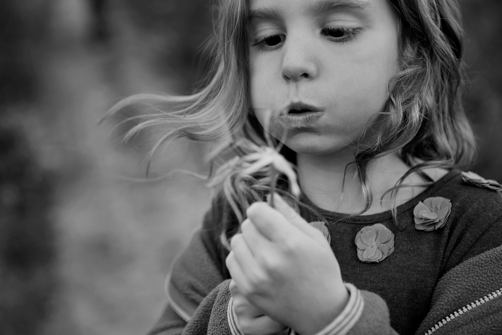dana-pugh-kids-photographer--2-dandelion